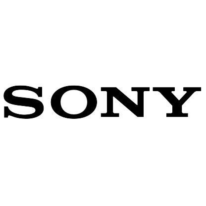 Sony Siteleri Çöktü