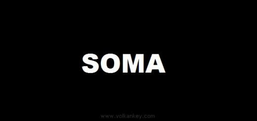 Soma'daki Elim Kaza